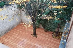 terrasse bois accoya 92