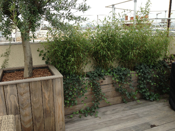 Aménager Un Toit Terrasse Avec Une Terrasse Bois.